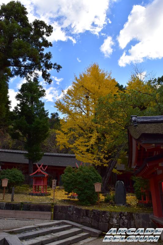 Voyage Japon 2015 Japon15_411